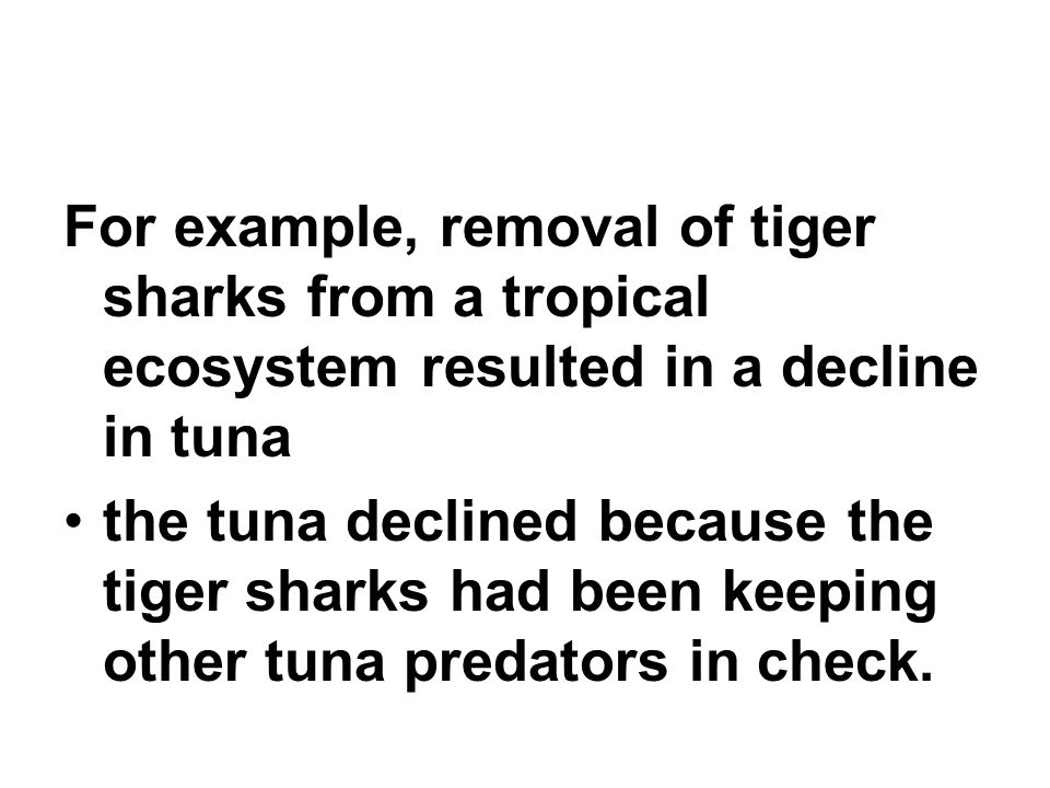 For example, removal of tiger sharks from a tropical ecosystem resulted in a decline in tuna the tuna declined because the tiger sharks had been keeping other tuna predators in check.