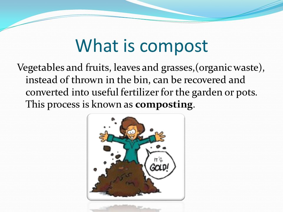 HOW WE TAKE COMPOST First a truck gets the waste and after several procedures we have the compost.