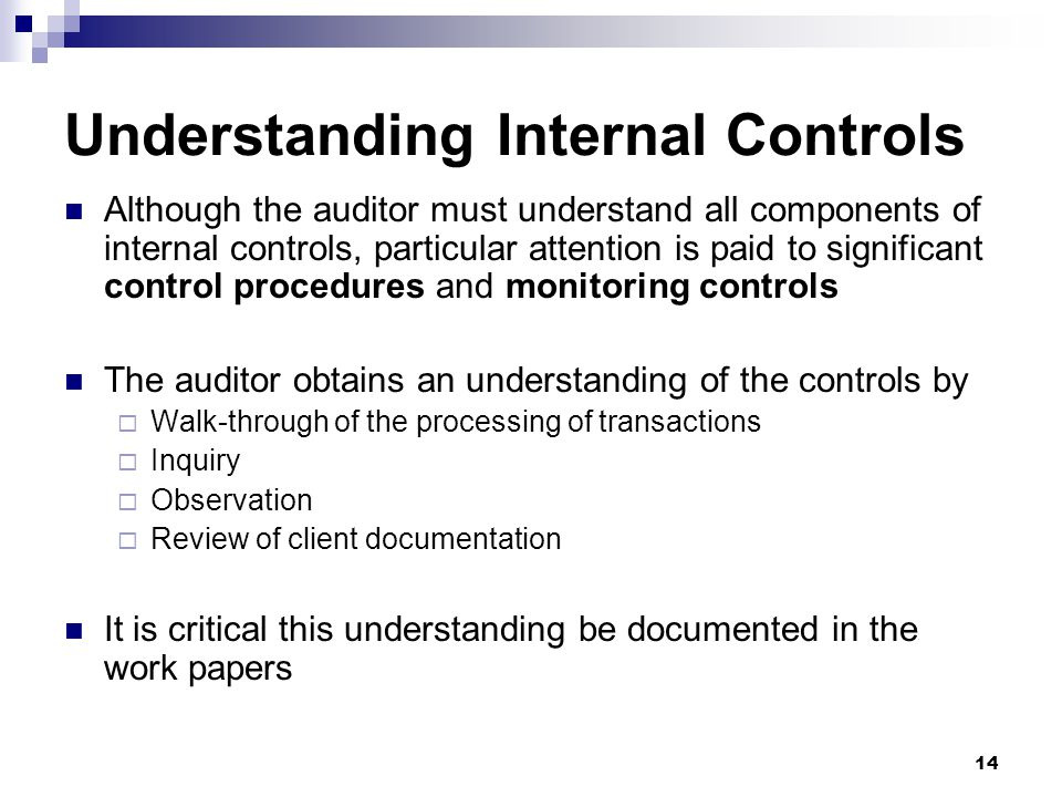 14 Understanding Internal Controls Although the auditor must understand all components of internal controls, particular attention is paid to significa