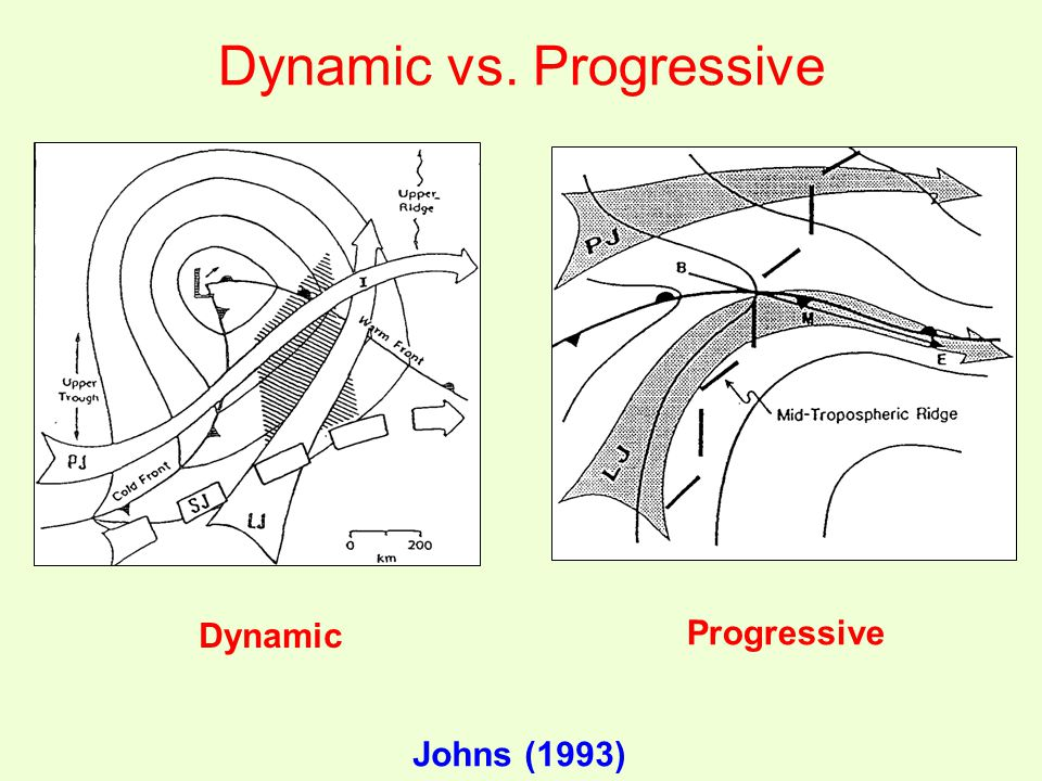 Dynamic vs. Progressive Dynamic Progressive Johns (1993)