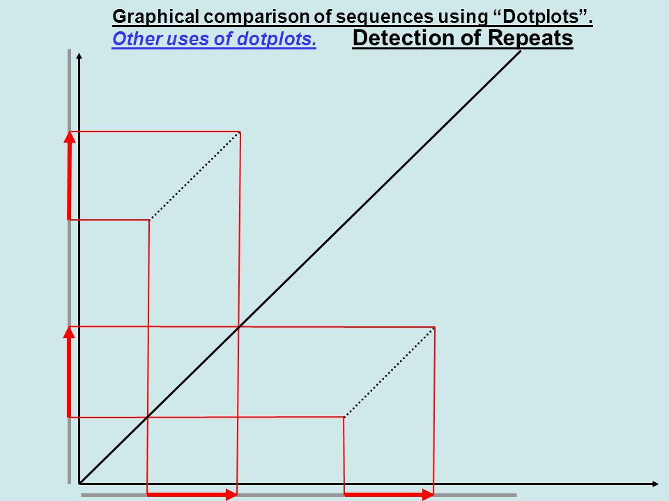 Graphical comparison of sequences using Dotplots . Detection of Repeats Other uses of dotplots.