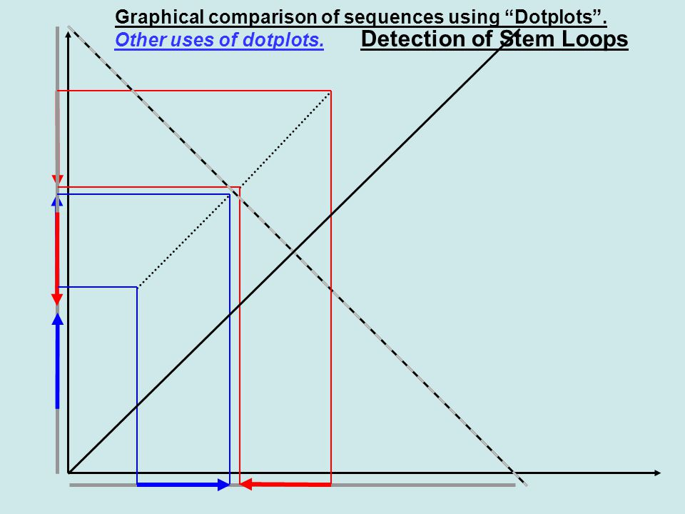 Graphical comparison of sequences using Dotplots . Other uses of dotplots. Detection of Stem Loops