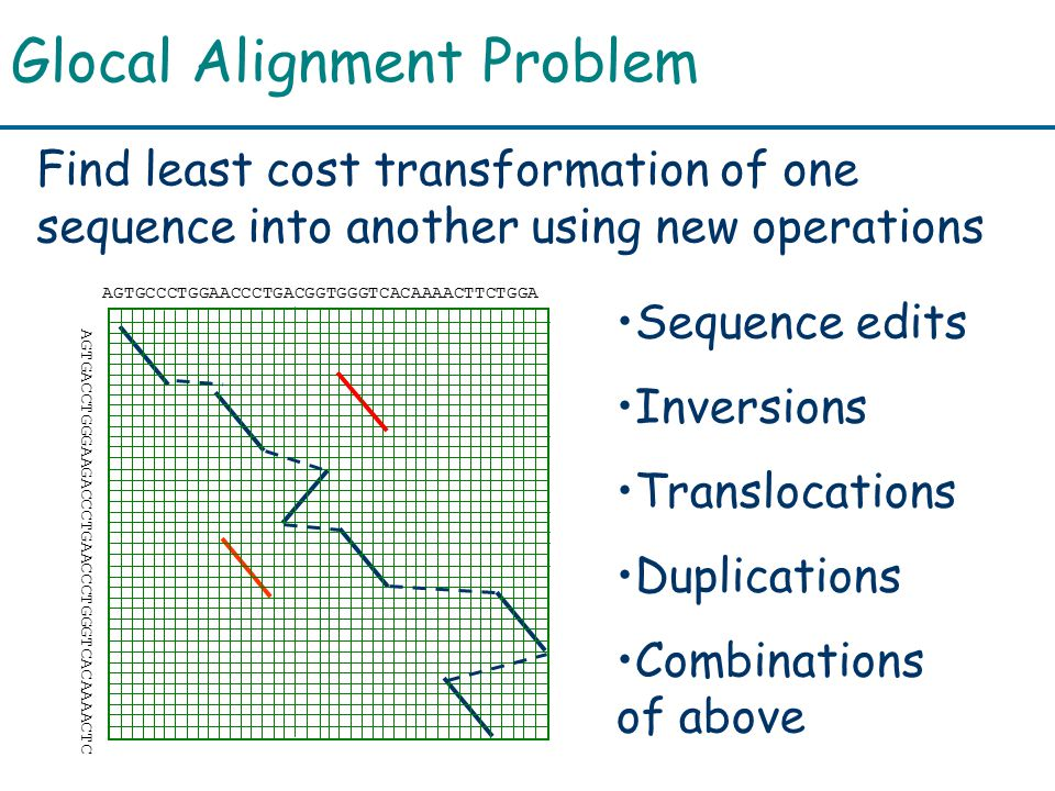 Glocal Alignment Problem Find least cost transformation of one sequence into another using new operations Sequence edits Inversions Translocations Duplications Combinations of above AGTGCCCTGGAACCCTGACGGTGGGTCACAAAACTTCTGGA AGTGACCTGGGAAGACCCTGAACCCTGGGTCACAAAACTC