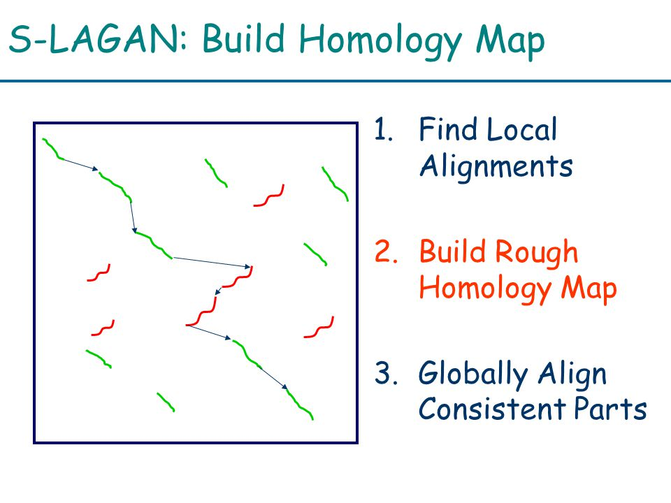 S-LAGAN: Build Homology Map 1.Find Local Alignments 2.Build Rough Homology Map 3.Globally Align Consistent Parts