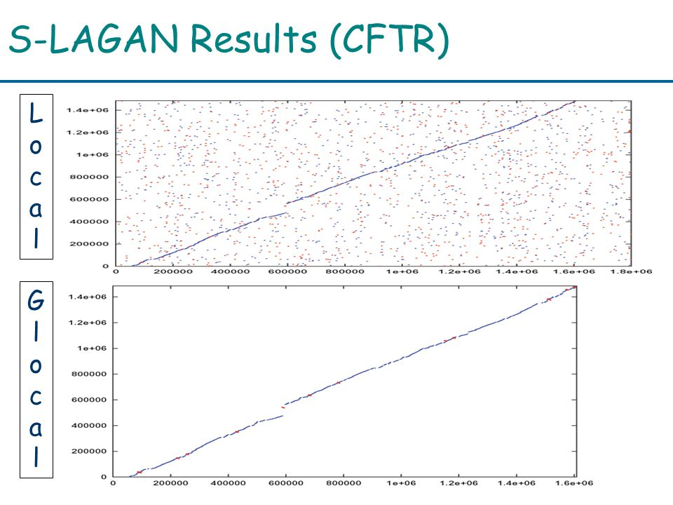 S-LAGAN Results (CFTR) LocalLocal GlocalGlocal