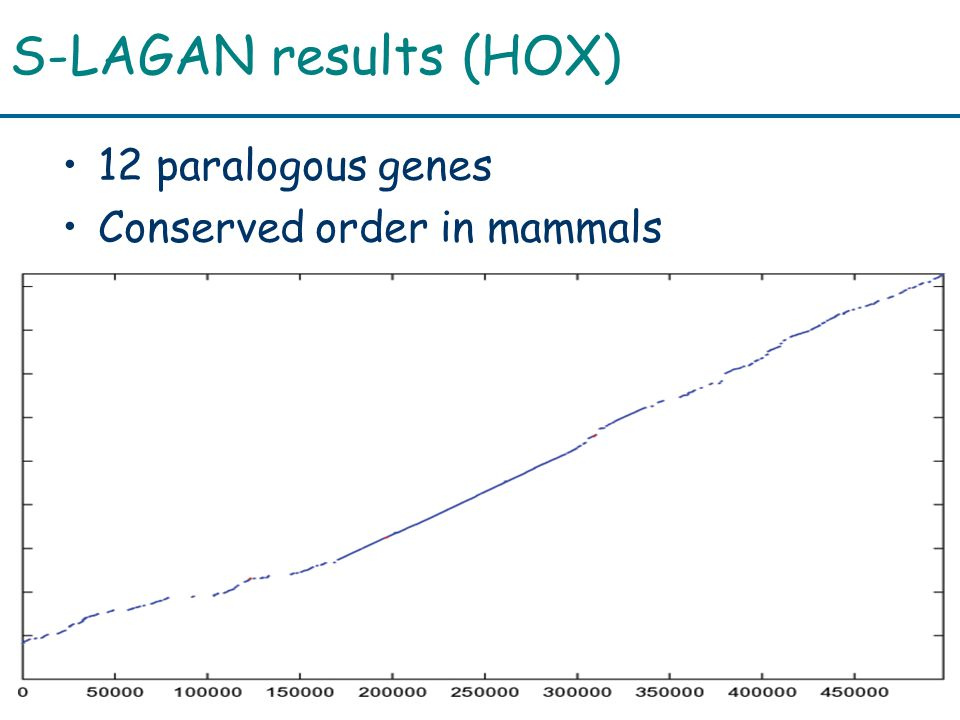 S-LAGAN results (HOX) 12 paralogous genes Conserved order in mammals