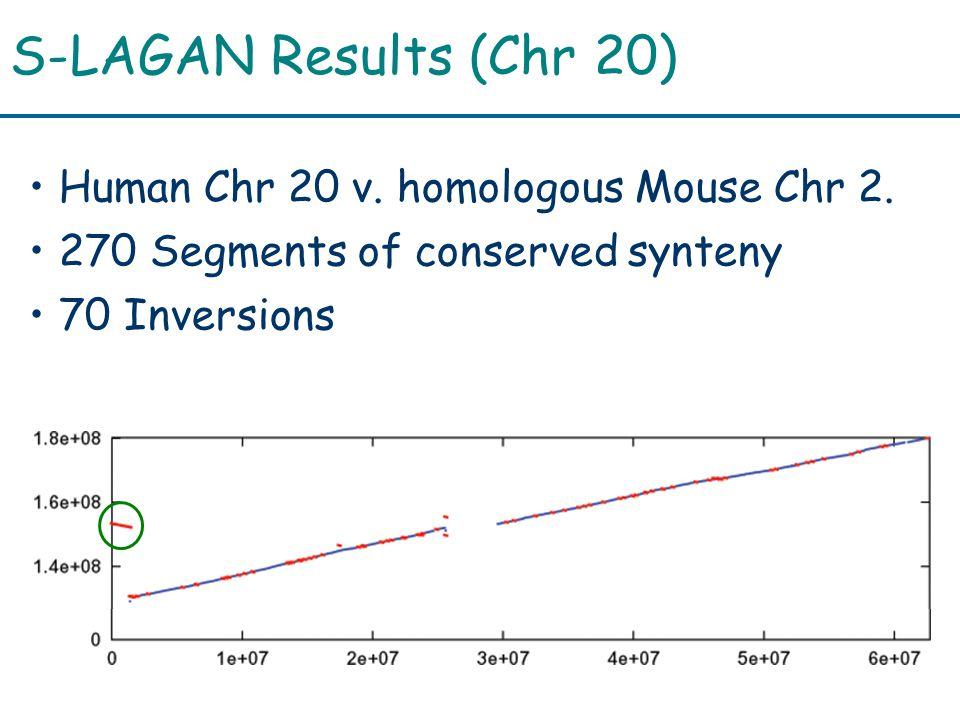 S-LAGAN Results (Chr 20) Human Chr 20 v. homologous Mouse Chr 2.