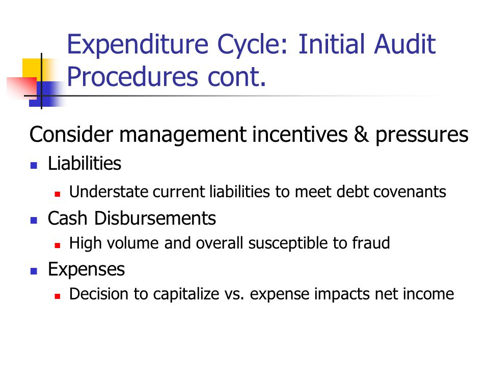 Expenditure Cycle: Initial Audit Procedures Understand how key expenditure cycle issues of economic substance are reflected in the financial statements How is the transaction initiated (initiate).