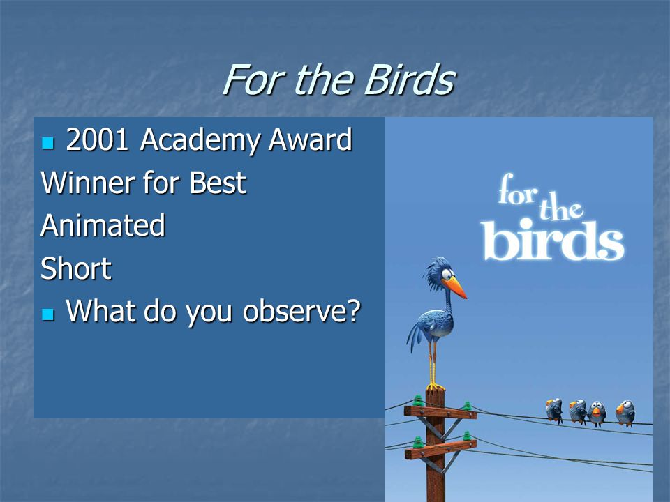 For the Birds 2001 Academy Award 2001 Academy Award Winner for Best AnimatedShort What do you observe.