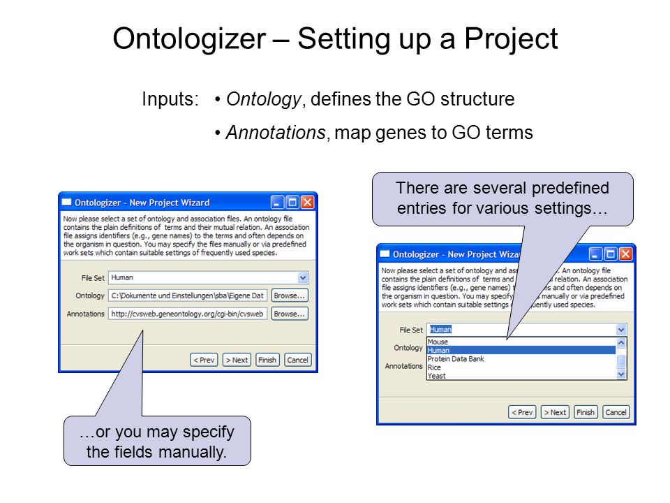 Ontologizer – Setting up a Project Ontology, defines the GO structure Annotations, map genes to GO terms There are several predefined entries for various settings… …or you may specify the fields manually.