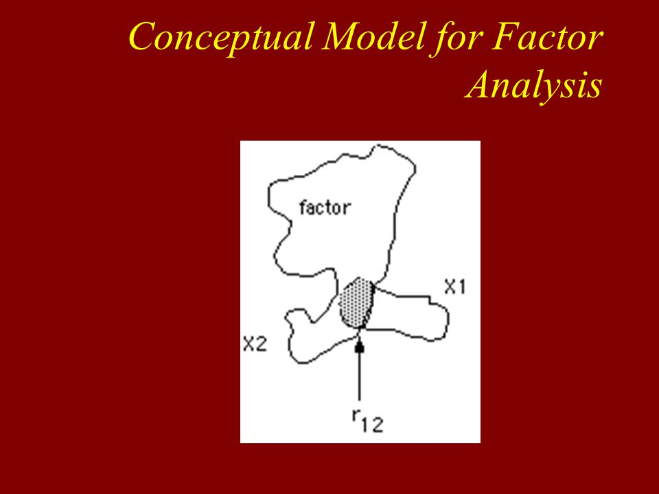 Conceptual Model for Factor Analysis
