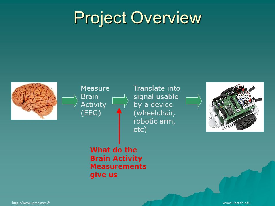 Project Overview http://www.ipmc.cnrs.frwww2.latech.edu Measure Brain Activity (EEG) Translate into signal usable by a device (wheelchair, robotic arm, etc) What do the Brain Activity Measurements give us