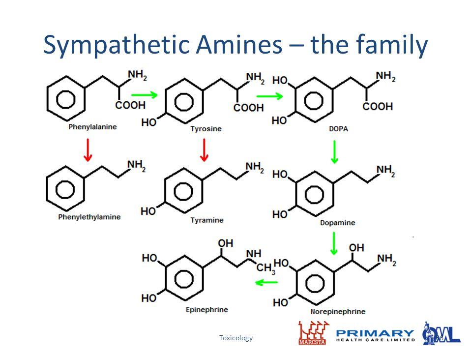 Toxicology Sympathetic Amines – the family 36