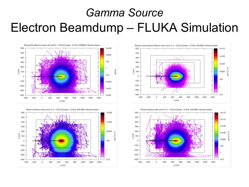 Gamma Source Electron Beamdump – FLUKA Simulation
