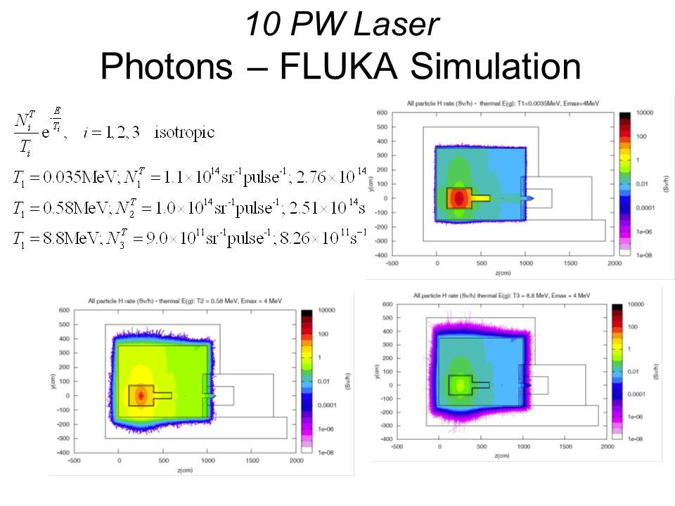 10 PW Laser Photons – FLUKA Simulation