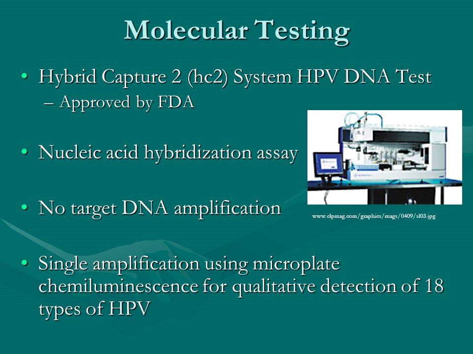 Molecular Testing cont.