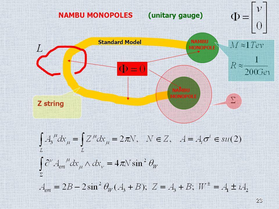 23 Standard Model NAMBU MONOPOLES (unitary gauge) Z string NAMBU MONOPOLE