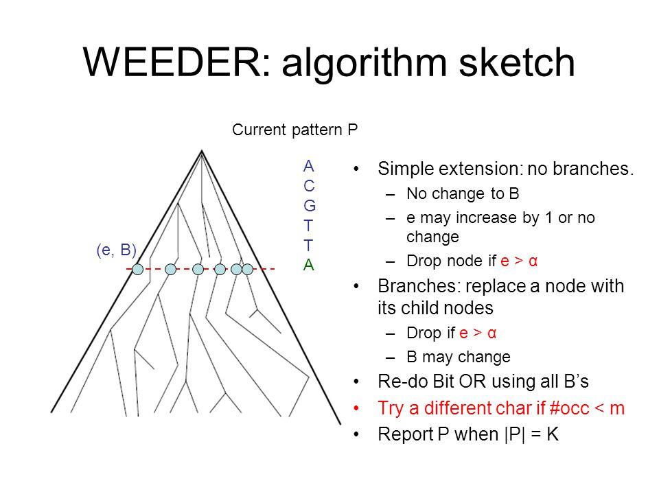 WEEDER: algorithm sketch Simple extension: no branches.