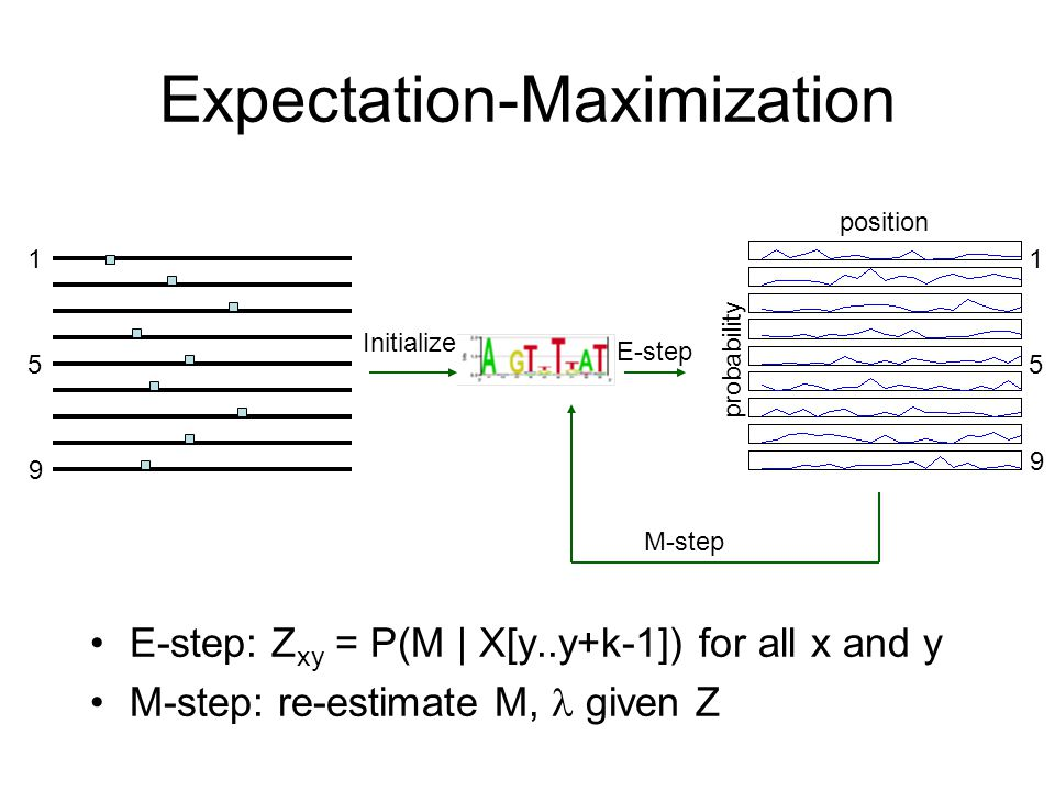 Expectation-Maximization E-step: Z xy = P(M | X[y..y+k-1]) for all x and y M-step: re-estimate M, given Z Initialize E-step M-step probability position 1 9 5 1 9 5