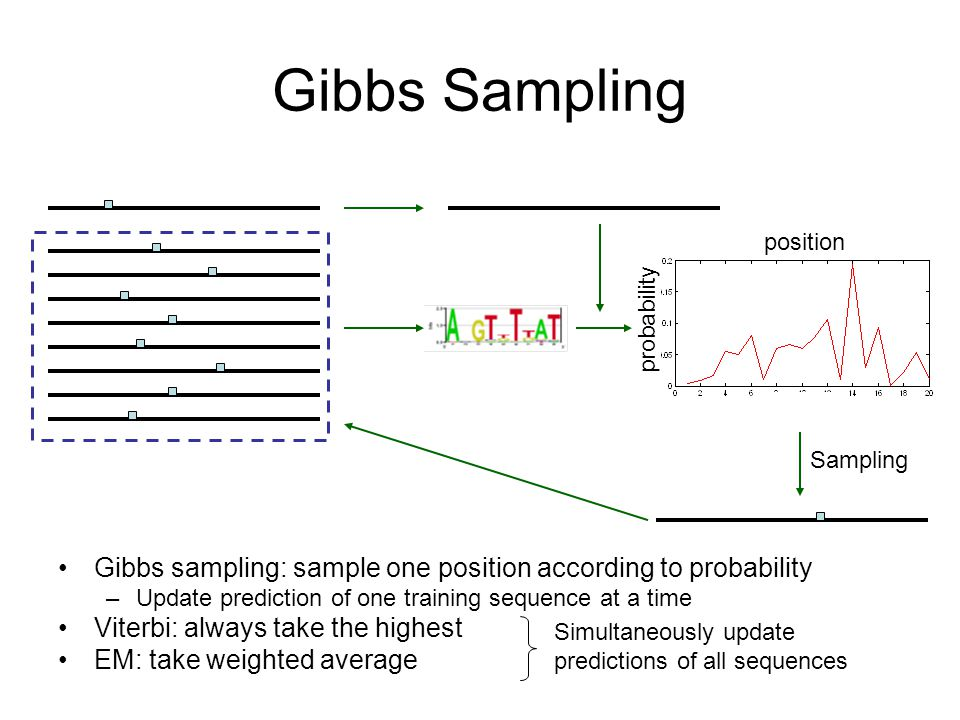 Gibbs Sampling Gibbs sampling: sample one position according to probability –Update prediction of one training sequence at a time Viterbi: always take the highest EM: take weighted average Sampling Simultaneously update predictions of all sequences position probability
