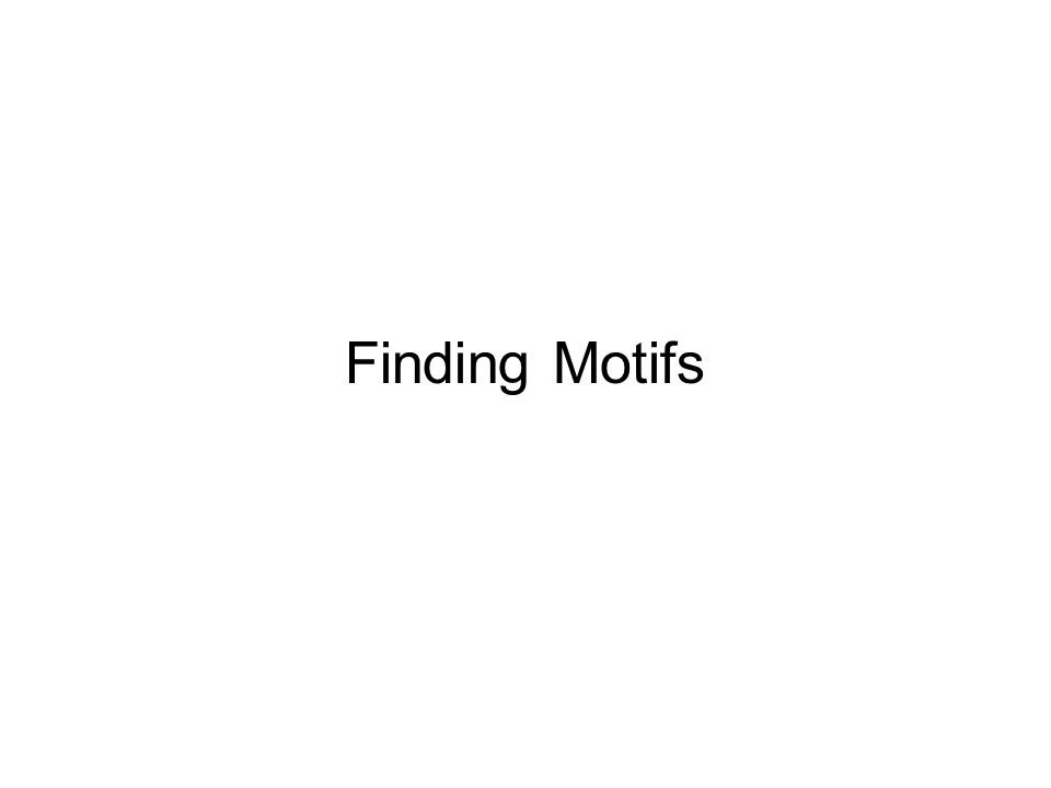 Finding Motifs