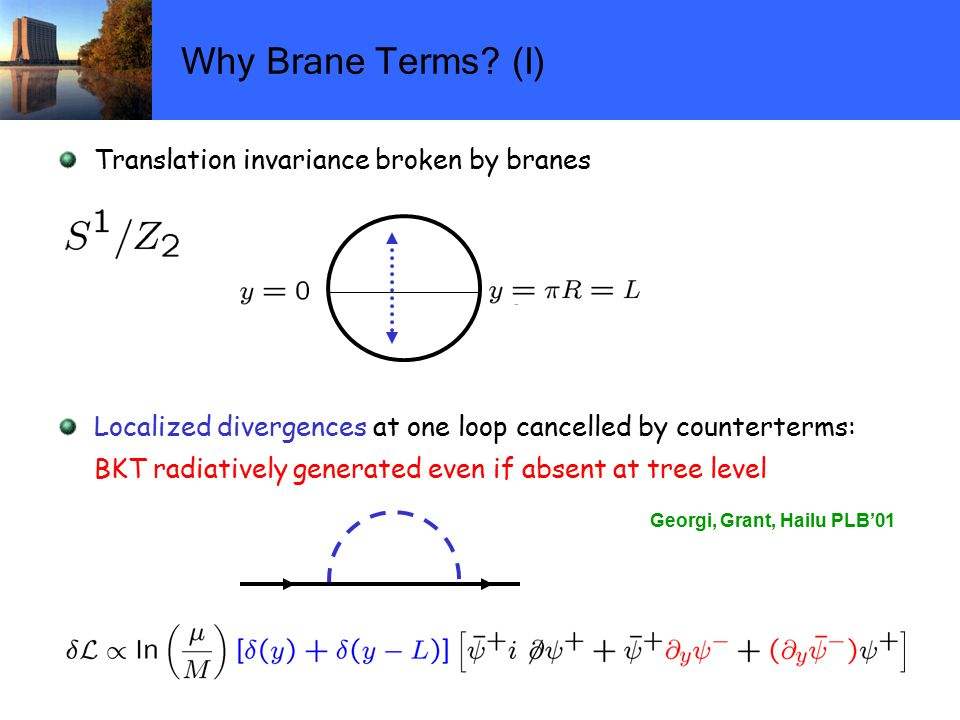 Why Brane Terms.