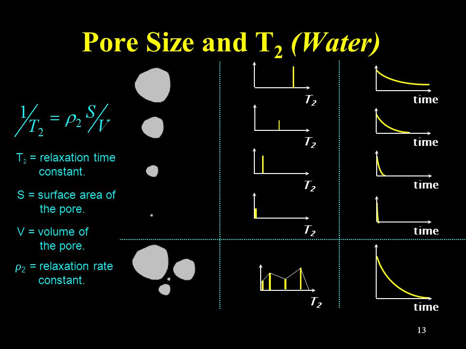 13 T2T2T2T2 T2T2T2T2 T2T2T2T2 T2T2T2T2 T2T2T2T2 time time time time time Pore Size and T 2 (Water) T 2 = relaxation time constant. S = surface area of