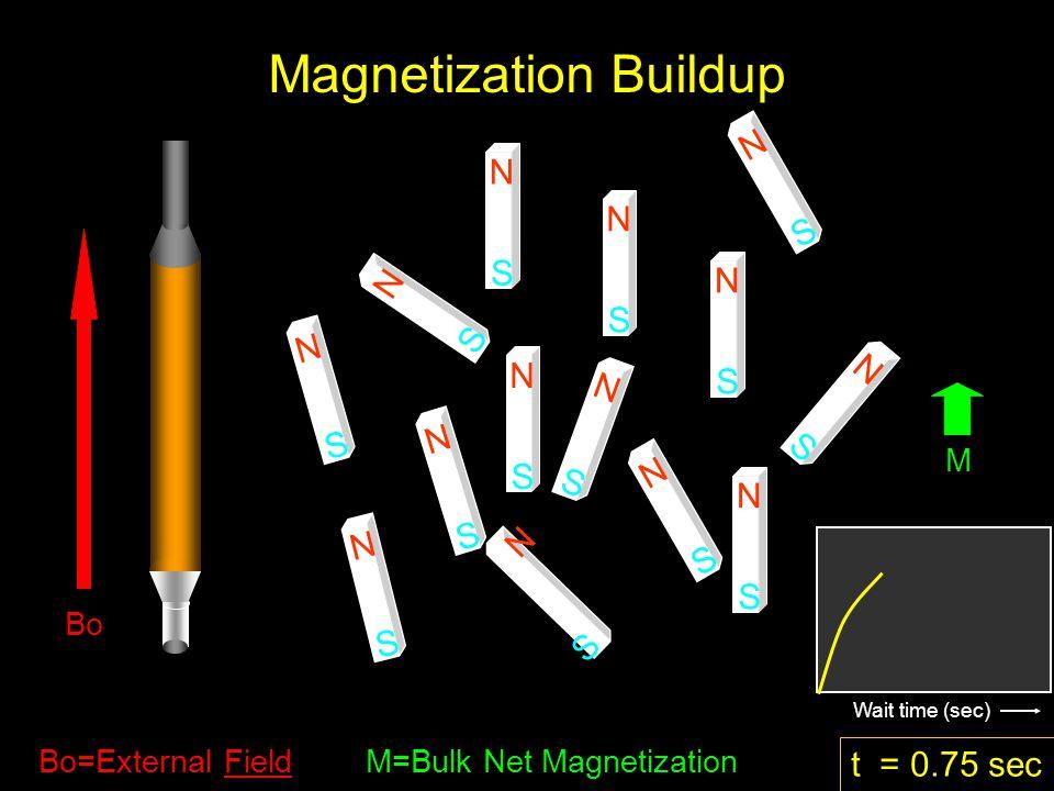 N S N S N S N S N S N S N S N S N S N S N S N S N S N S t = 0.75 sec M Bo=External Field M=Bulk Net Magnetization Wait time (sec) Magnetization Buildup Bo