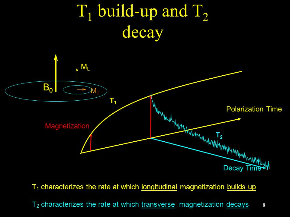 8 Polarization Time T2T2 Decay Time T1T1 Magnetization T 1 characterizes the rate at which longitudinal magnetization builds up T 2 characterizes the