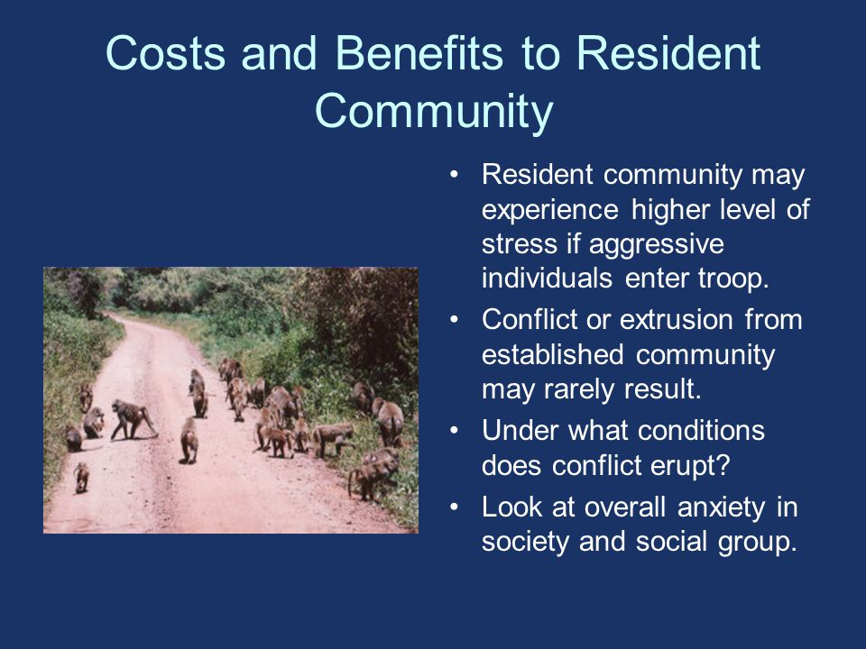 Costs and Benefits to Resident Community Resident community may experience higher level of stress if aggressive individuals enter troop.