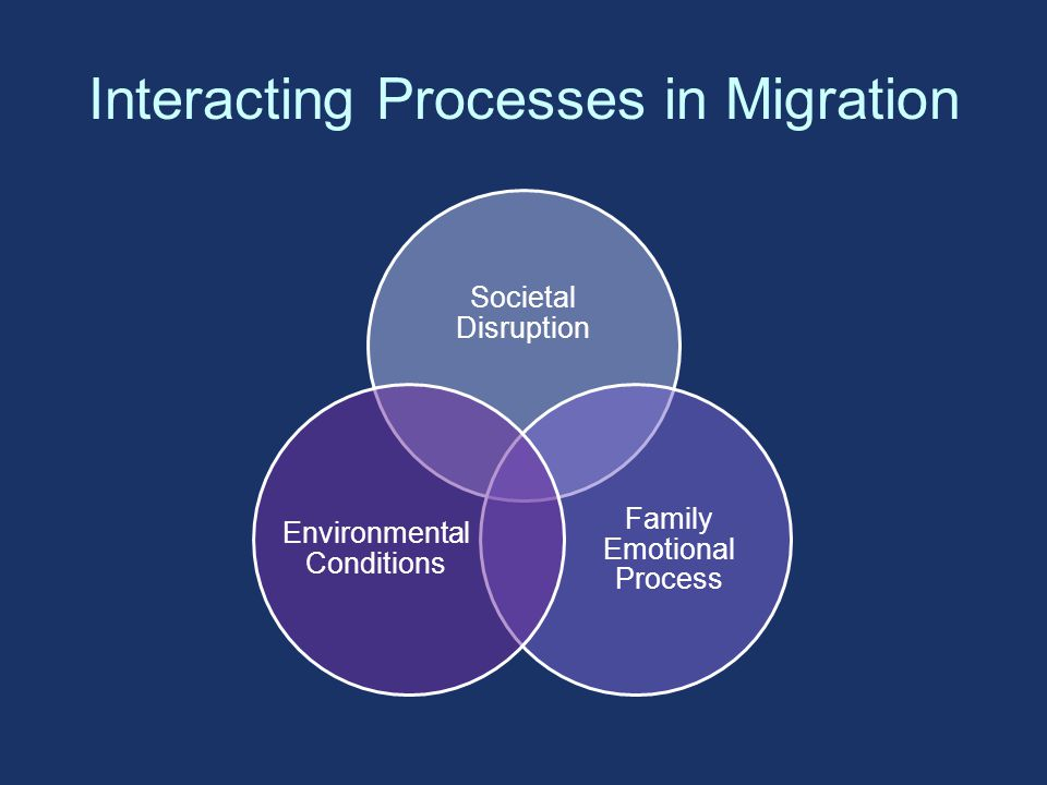 Interacting Processes in Migration Societal Disruption Family Emotional Process Environmental Conditions
