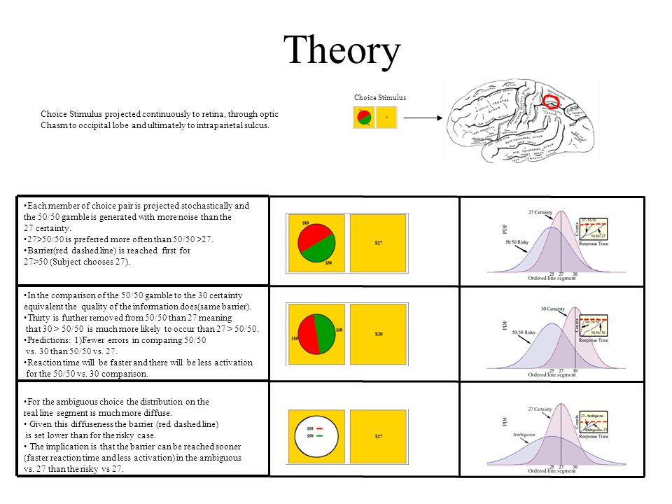 Theory Choice Stimulus Choice Stimulus projected continuously to retina, through optic Chasm to occipital lobe and ultimately to intraparietal sulcus.