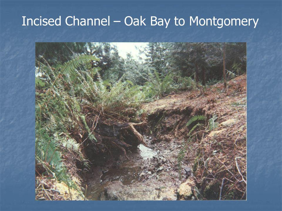 Oak Bay to Montgomery Lane Improvements