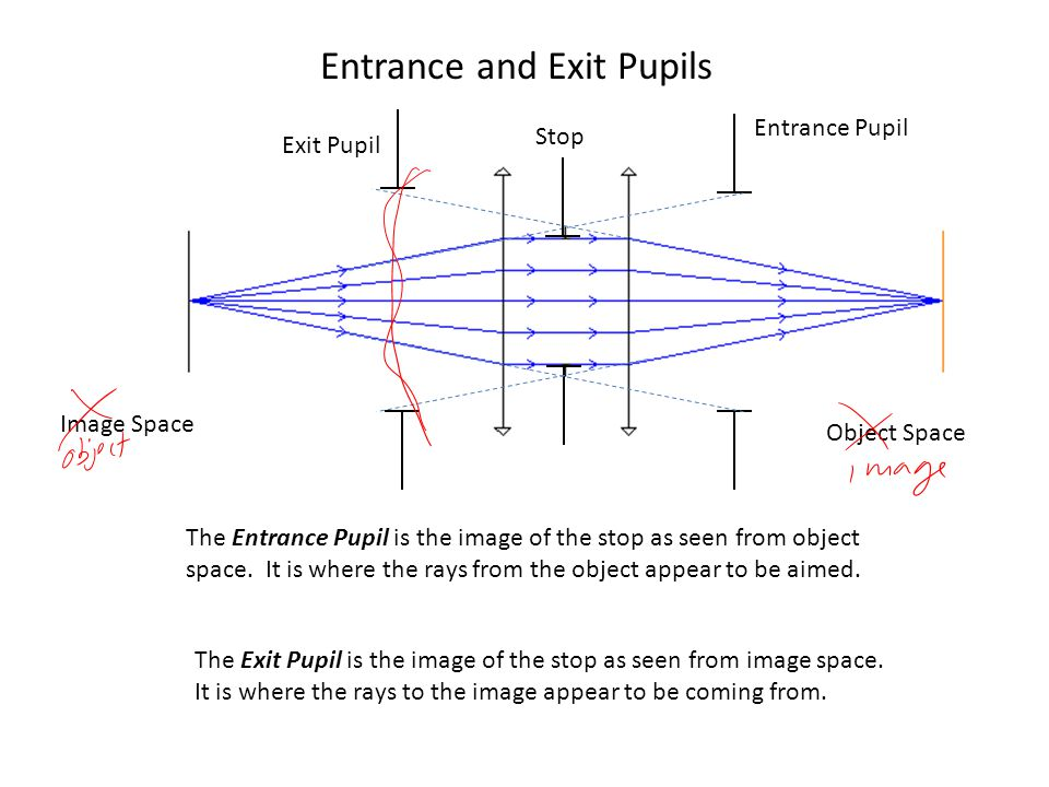 Entrance and Exit Pupils Stop Entrance Pupil Exit Pupil The Entrance Pupil is the image of the stop as seen from object space.