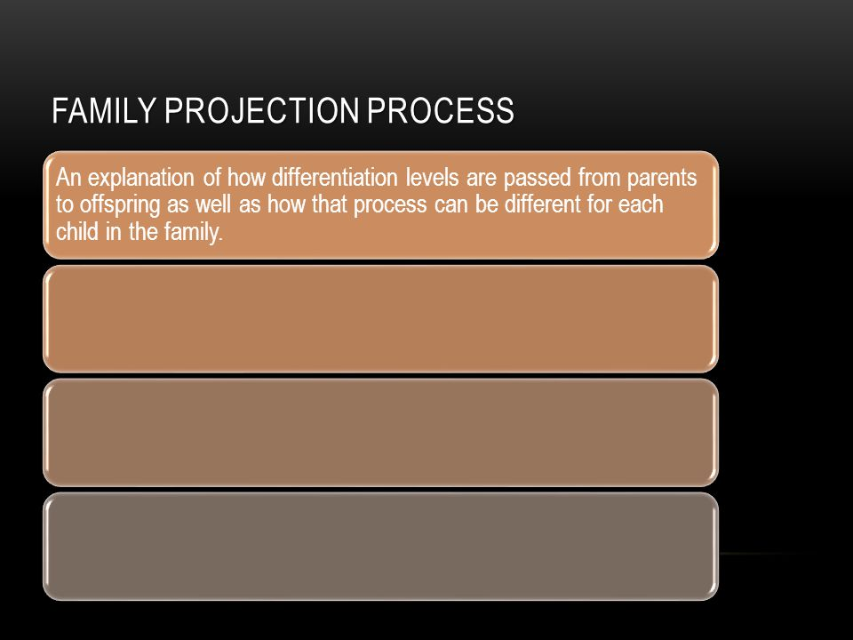 FAMILY PROJECTION PROCESS