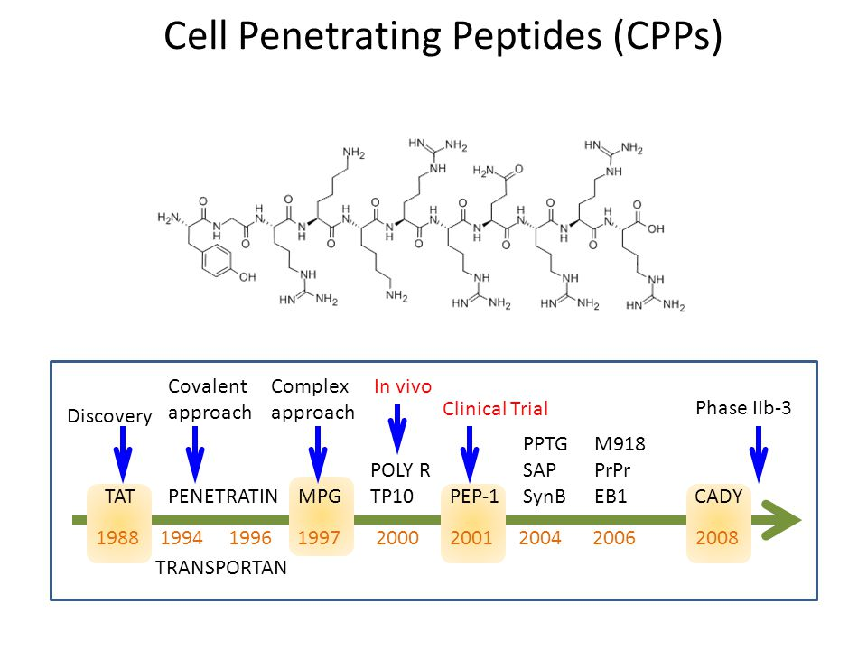 1988 1994 1996 1997 2000 2001 2004 2006 2008 Discovery TAT Covalent approach PENETRATIN TRANSPORTAN Complex approach MPG POLY R TP10 In vivo PEP-1 Clinical Trial PPTG SAP SynB M918 PrPr EB1 CADY Phase IIb-3 Cell Penetrating Peptides (CPPs)