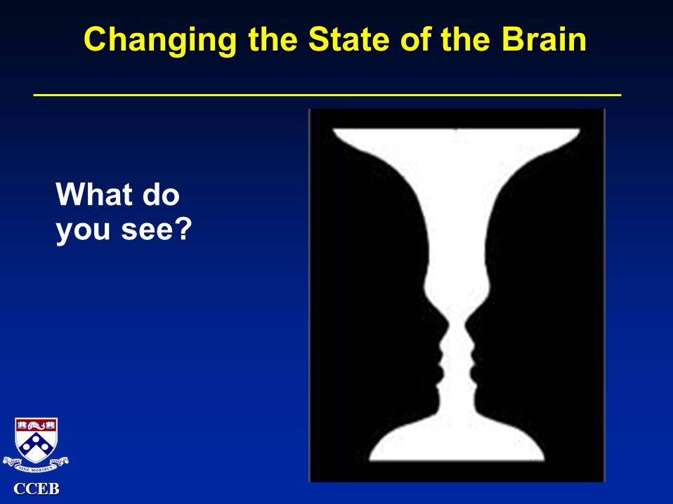 CCEB Changing the State of the Brain What do you see