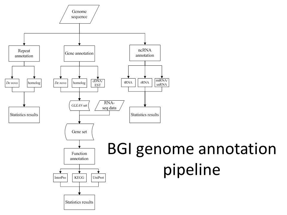BGI genome annotation pipeline