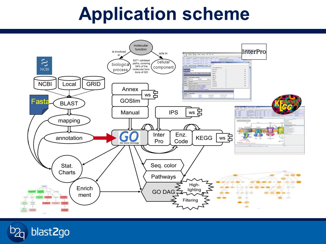 cellular component biological process Application scheme