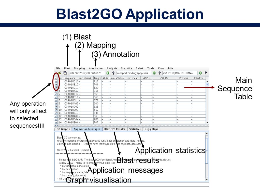 Blast2GO Application Main Sequence Table ( 1) Blast (2) Mapping (3) Annotation Graph visualisation Application messages Blast results Application statistics Any operation will only affect to selected sequences!!!!