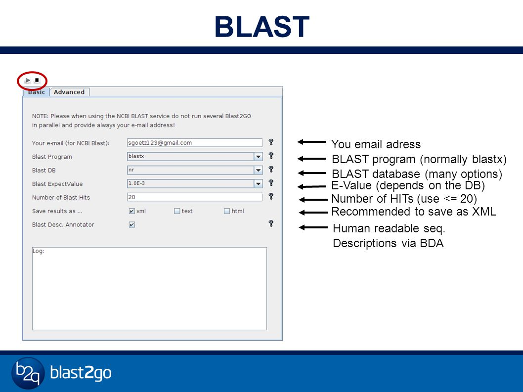 You email adress BLAST program (normally blastx) Number of HITs (use <= 20) Human readable seq.