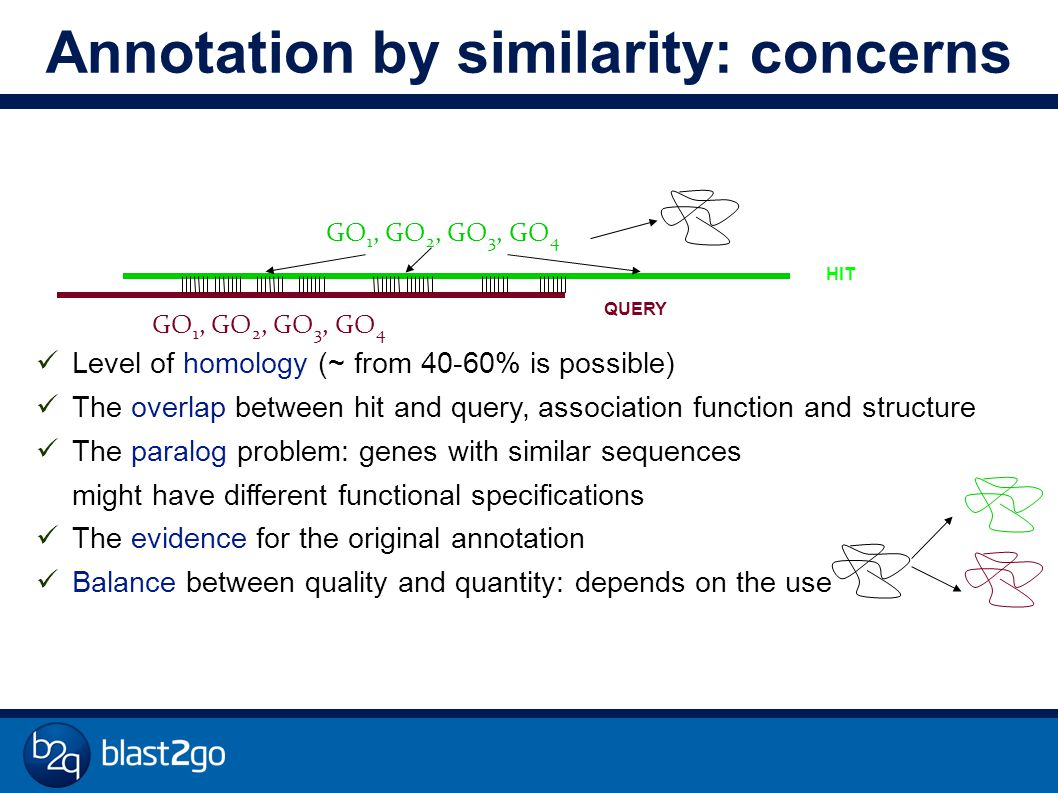 Annotation by similarity: concerns Level of homology (~ from 40-60% is possible) The overlap between hit and query, association function and structure The paralog problem: genes with similar sequences might have different functional specifications The evidence for the original annotation Balance between quality and quantity: depends on the use GO 1, GO 2, GO 3, GO 4 QUERY HIT