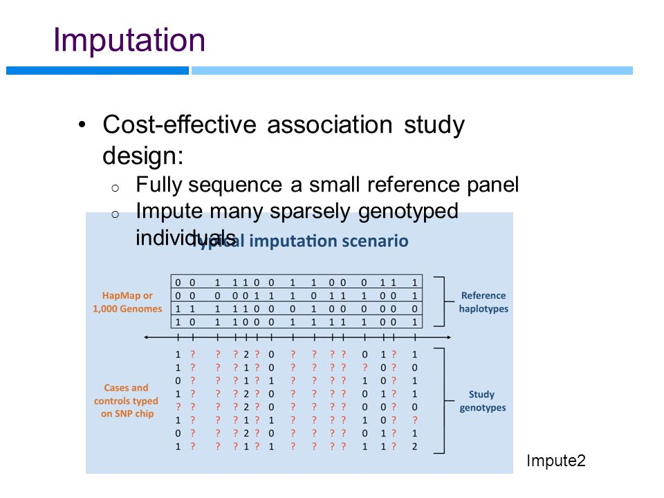 Imputation Impute2 Cost-effective association study design: o Fully sequence a small reference panel o Impute many sparsely genotyped individuals