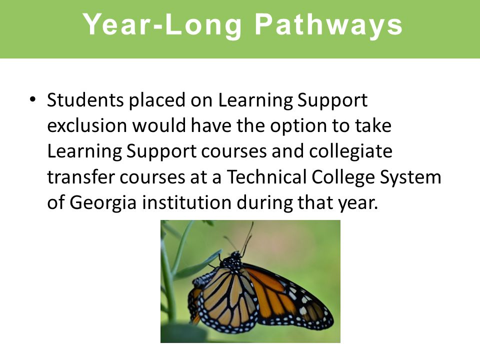 Year-Long Pathways Students placed on Learning Support exclusion would have the option to take Learning Support courses and collegiate transfer courses at a Technical College System of Georgia institution during that year.