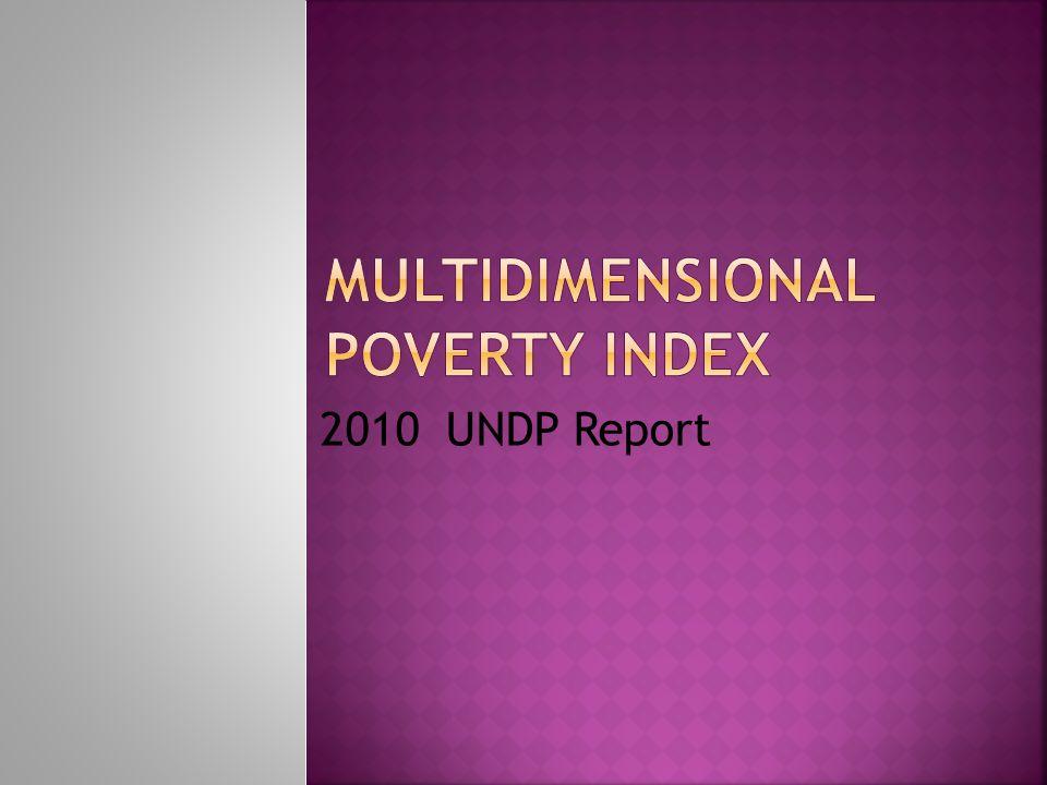 2010 UNDP Report