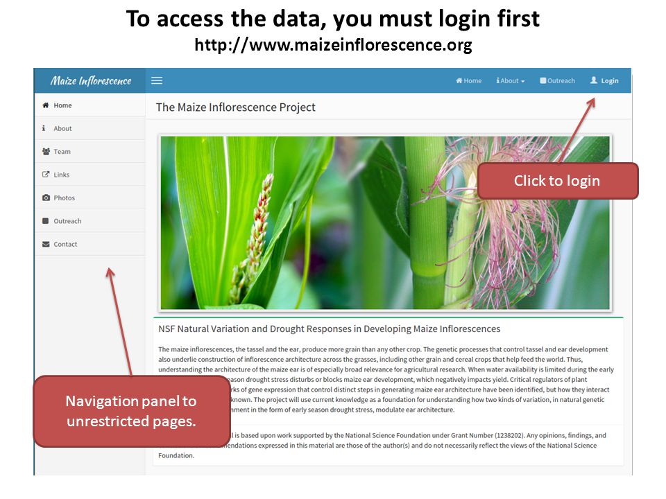 Data Download Click on the Download link to go to data download web page Data is categorized based on the date we received the data.