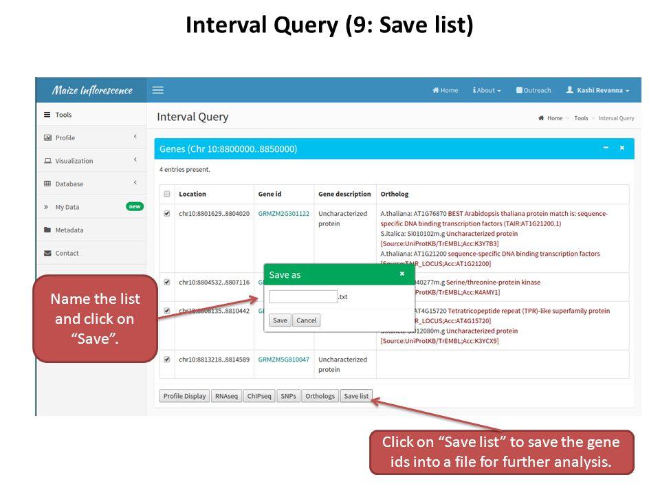 Interval Query (9: Save list) Click on Save list to save the gene ids into a file for further analysis.