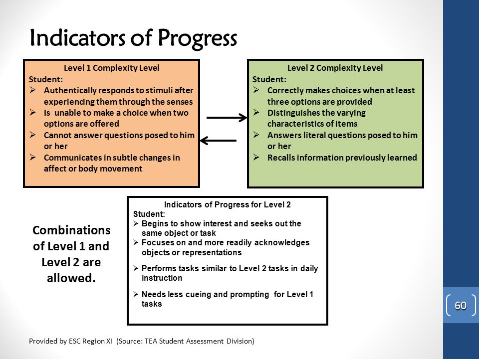 Indicators of Progress Provided by ESC Region XI (Source: TEA Student Assessment Division) 60 Level 1 Complexity Level Student:  Authentically respon