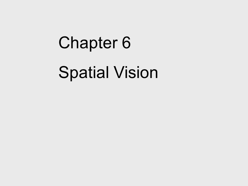 Chapter 6 Spatial Vision