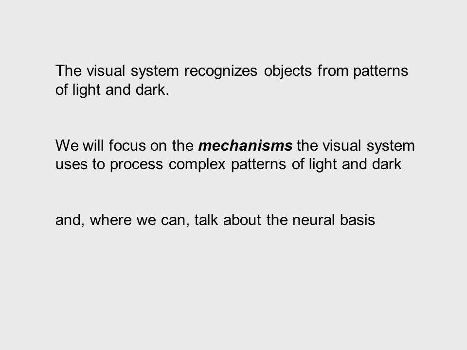 A fundamental requirement for detecting objects is to determine the location of the edges (boundaries) of the objects The visual system recognizes objects from spatial patterns of light and dark